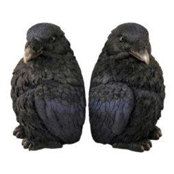 Crow Bookends-Corvus