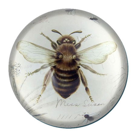 Bee Paperweight