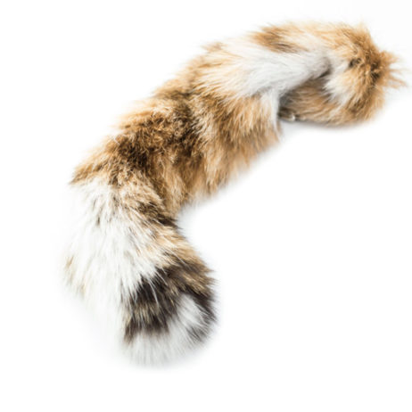 Bobcat Tail With Keychain